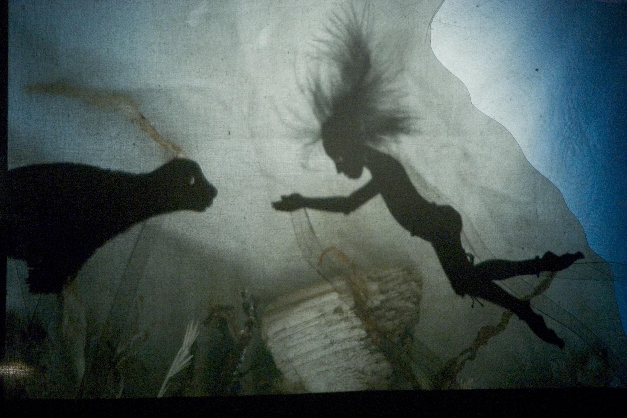 Róisín agus an Rón 2008: Underwater